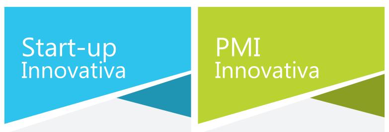 startup pmi