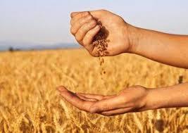 agricoltori2